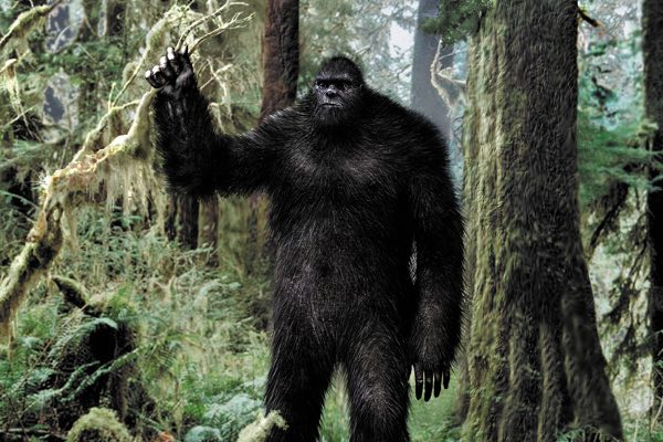 Sasquatch is also known as Big-Foot
